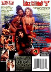 Girlz 'N Da Hood 3 (Girlz N The Hood 3) (1993)