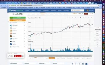 Криптоинвесторы: обучение по криптовалютам (2017) Видеокурс