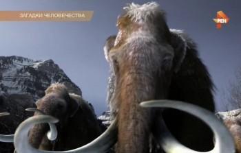 Загадки человечества с Олегом Шишкиным (13.07.2017) SATRip