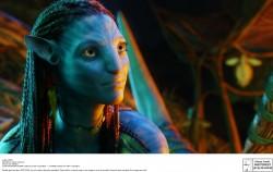 Аватар / Avatar (Сэм Уортингтон, Зои Салдана, Сигурни Уивер, 2009) Acd5be564867163