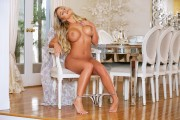 http://thumbs.imagebam.com/66/38/8a/70a23f612763233.jpg