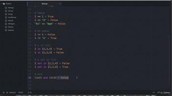 Python 3 - программирование для начинающих (2017) Видеокурс