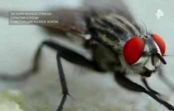 Засекреченные списки. Скрытая угроза! 7 настоящих хозяев Земли (2017) SATRip