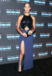 Leona Lewis -                     Mercy For Animals Annual Hidden Heroes Gala Los Angeles September 23rd 2017.
