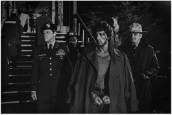 Рэмбо: Первая кровь / First Blood (Сильвестр Сталлоне, 1982) 249d84595835783